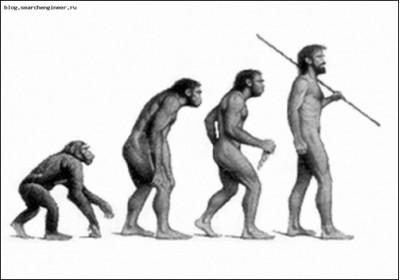 эволюция,теория,дарвин,докозательство,летопись