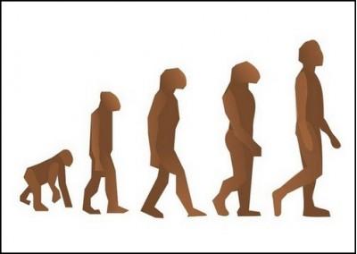 теории, креационизма, эволюции,