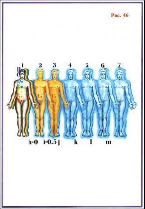 эволюция,теория,аналитика,дарвин,сомнение,факторы,гипотеза
