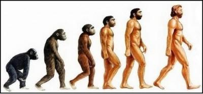 эволюция,человечество,миссия,адвентист,теория,дарвин