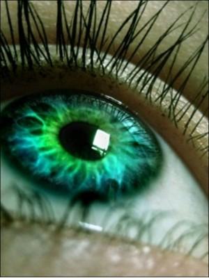 эволюция,глаз,человек,сложность,аналитика